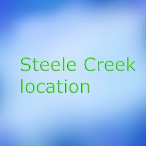 steele creek pediatric dental office